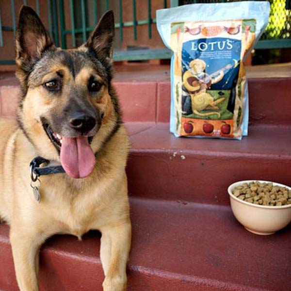 Lotus dog food sale