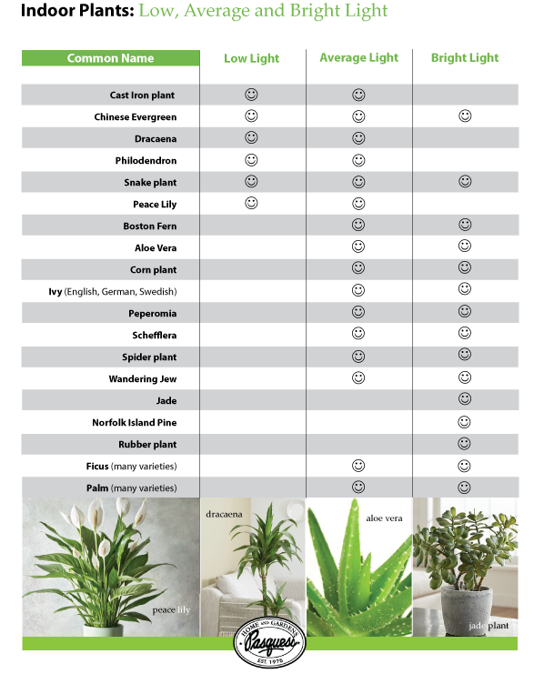 Plant light list