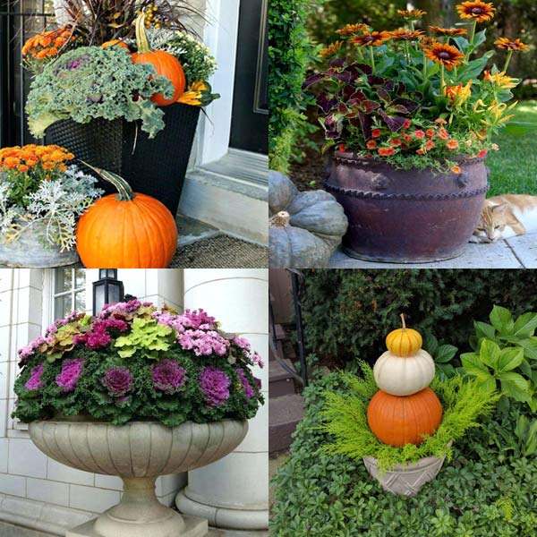 Containers for Fall