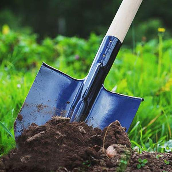 FAQ soils & fertilizers