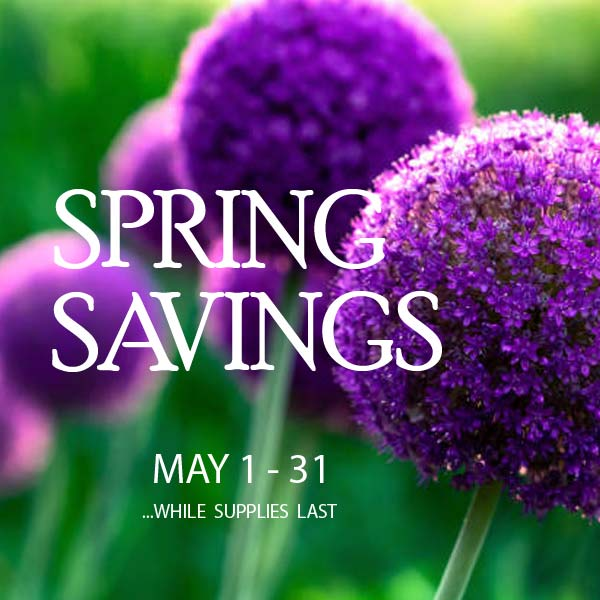 Spring Savings Sale 2021