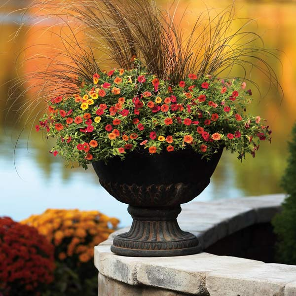 Melinda's Gardening How-To: Fall Containers
